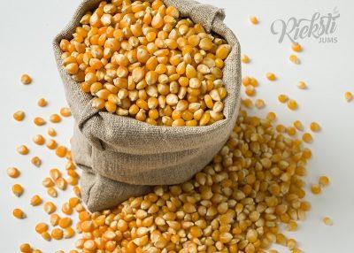 Kukurūzas sēklas popkornam 1 kg